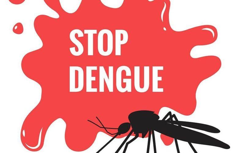 How to prevent Dengue?