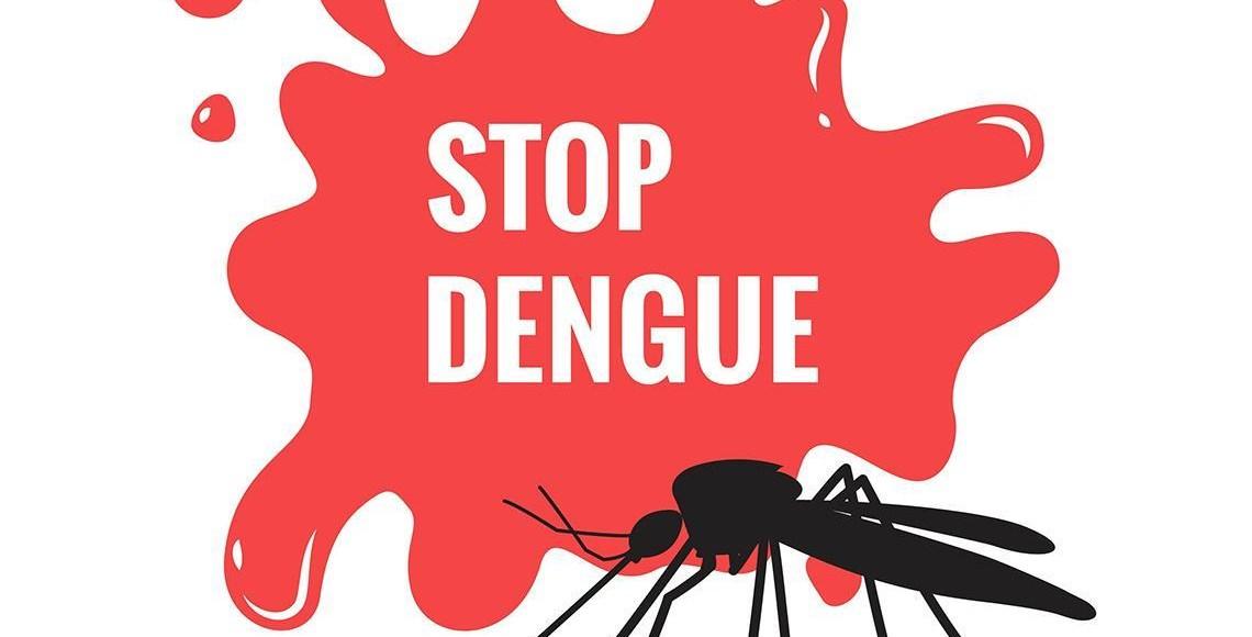prevent Dengue